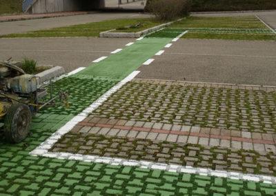 gpservice-linee-parcheggi